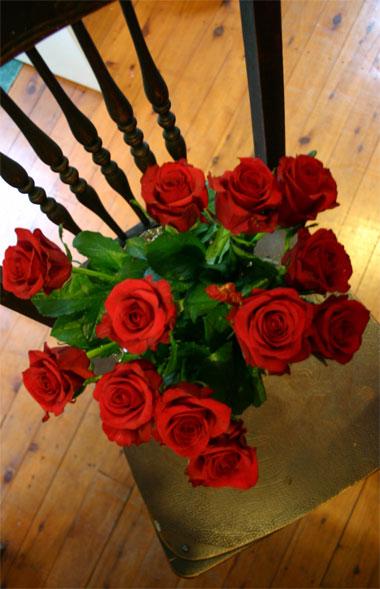 Lorna's-roses